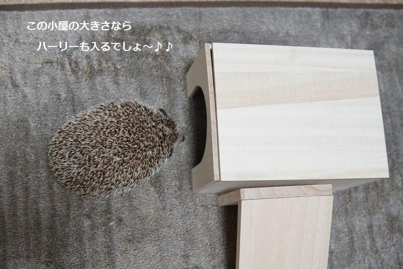 f:id:chikojirou:20161001212522j:plain