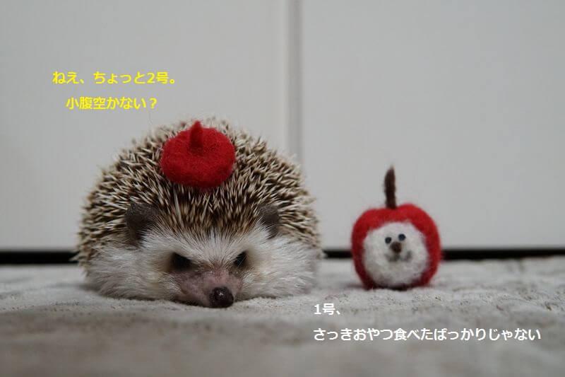f:id:chikojirou:20161018215637j:plain