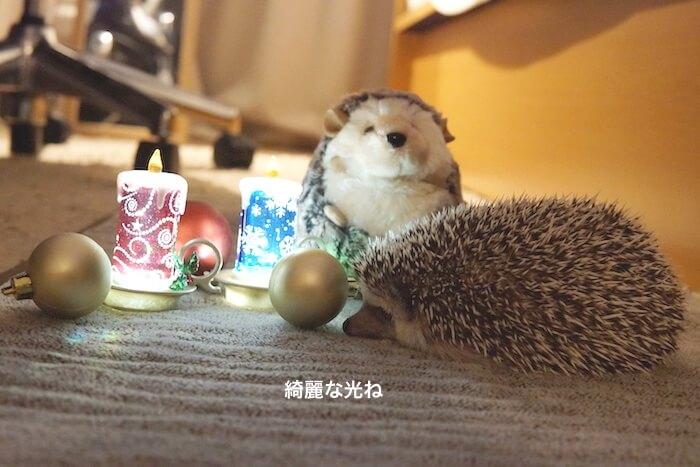 f:id:chikojirou:20161219220851j:plain