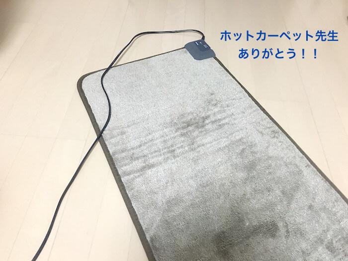 f:id:chikojirou:20161228173743j:plain