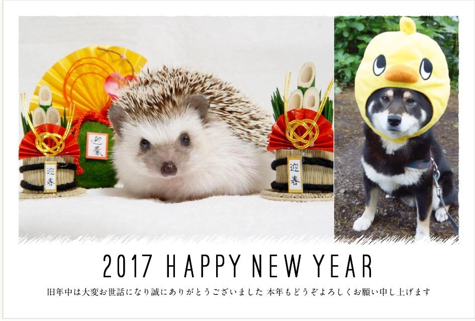 f:id:chikojirou:20161231130850j:plain