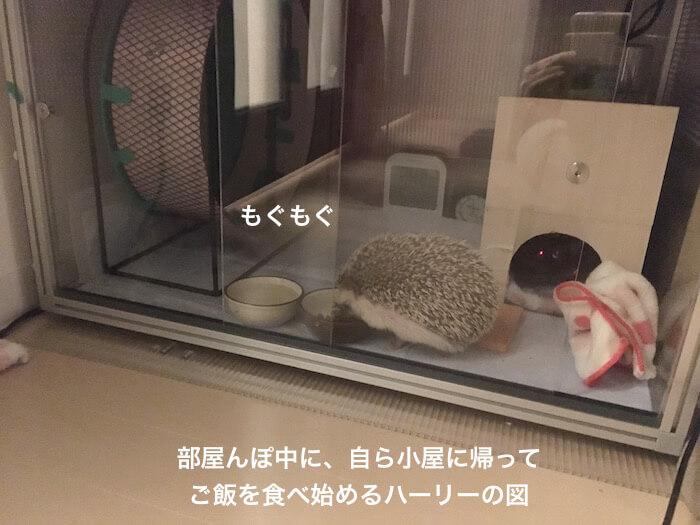 f:id:chikojirou:20170103121453j:plain