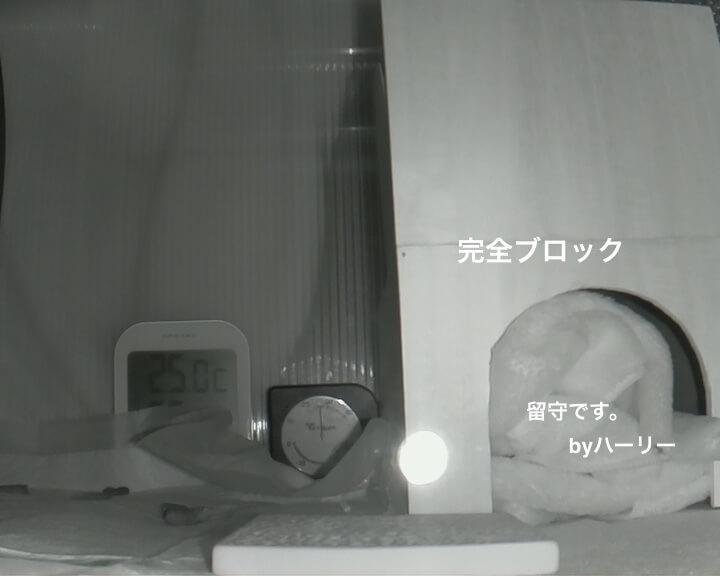 f:id:chikojirou:20170107215211j:plain