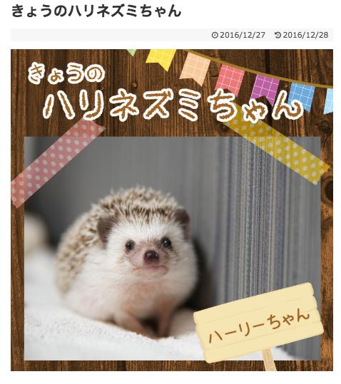 f:id:chikojirou:20170124221455p:plain