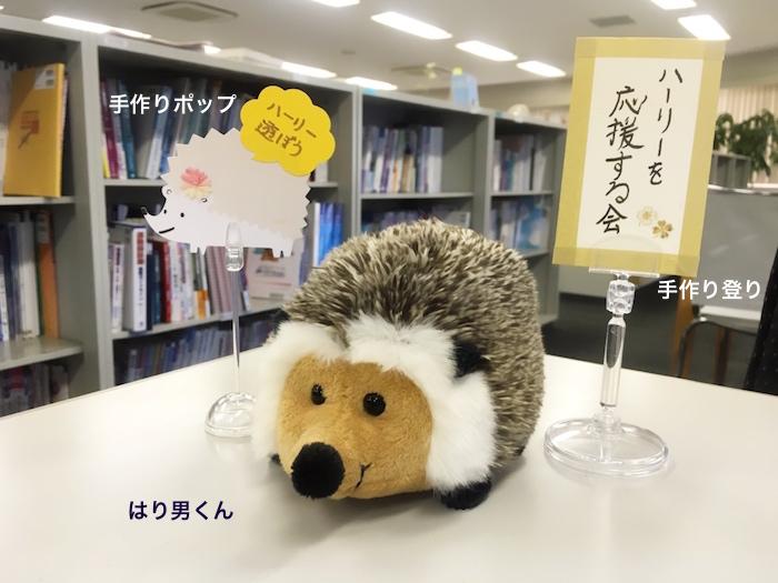 f:id:chikojirou:20170126214305j:plain