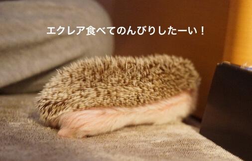f:id:chikojirou:20170129203847j:plain
