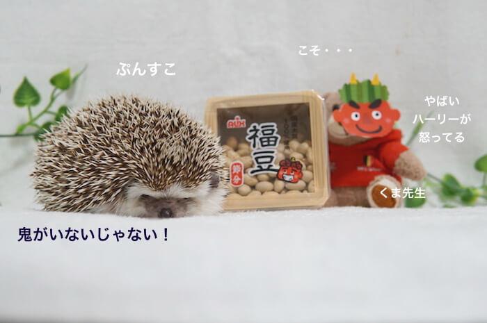 f:id:chikojirou:20170204220116j:plain