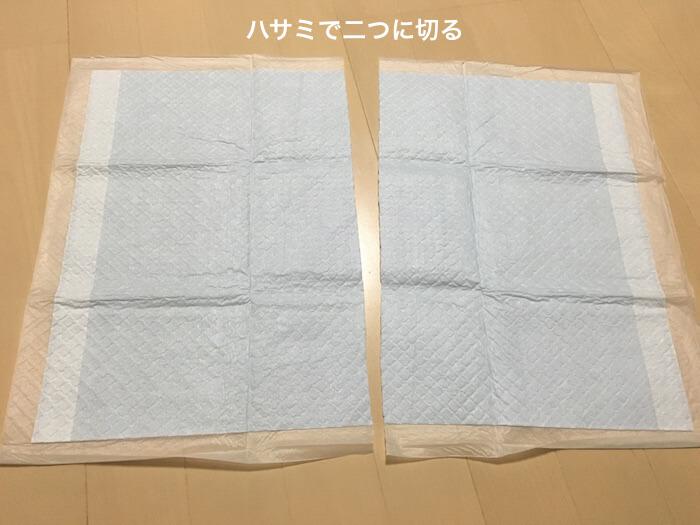 f:id:chikojirou:20170210220827j:plain