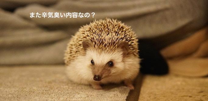 f:id:chikojirou:20170302221136j:plain
