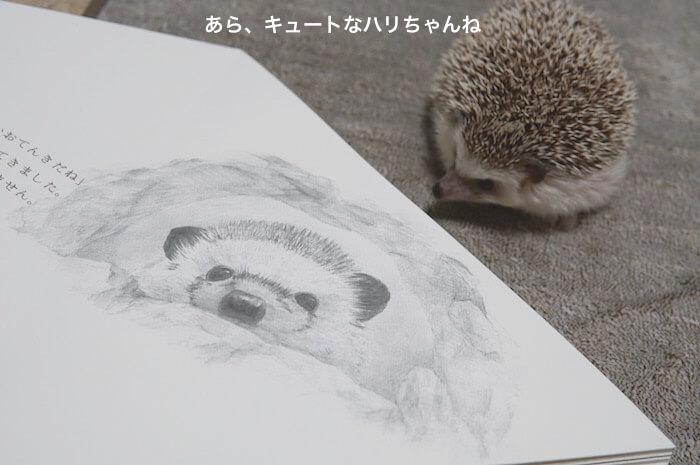 f:id:chikojirou:20170305205041j:plain