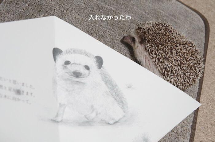 f:id:chikojirou:20170305205127j:plain