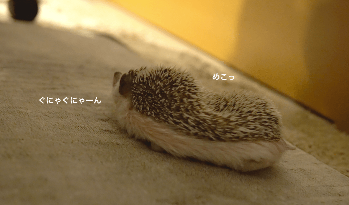 f:id:chikojirou:20170306215336p:plain