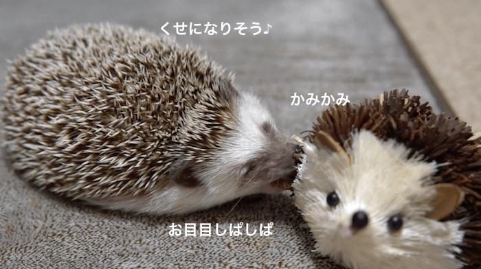 f:id:chikojirou:20170309220803p:plain