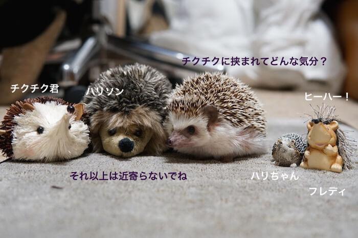 f:id:chikojirou:20170309220935j:plain
