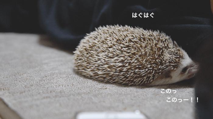f:id:chikojirou:20170313220647p:plain