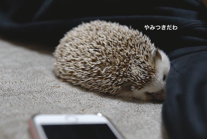 f:id:chikojirou:20170313220724p:plain