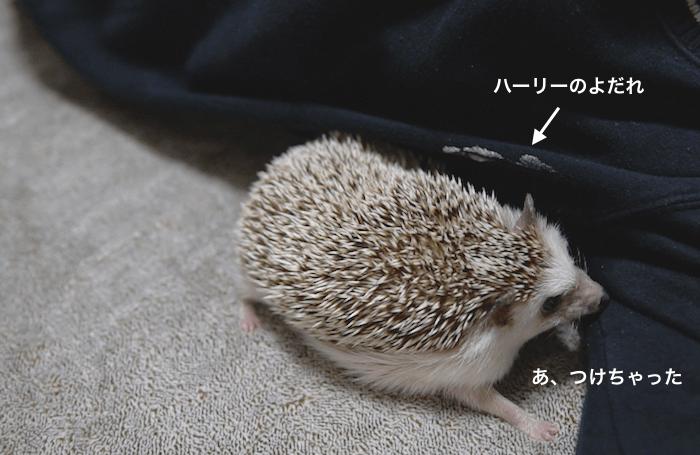 f:id:chikojirou:20170313220746p:plain
