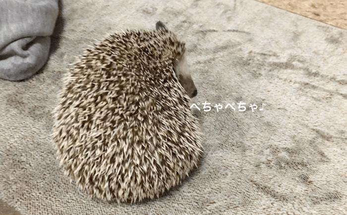 f:id:chikojirou:20170316220932p:plain