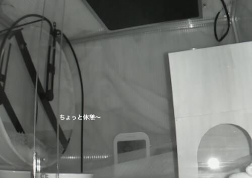 f:id:chikojirou:20170318213009j:plain