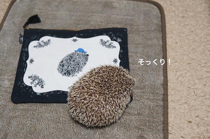 f:id:chikojirou:20170322214126j:plain
