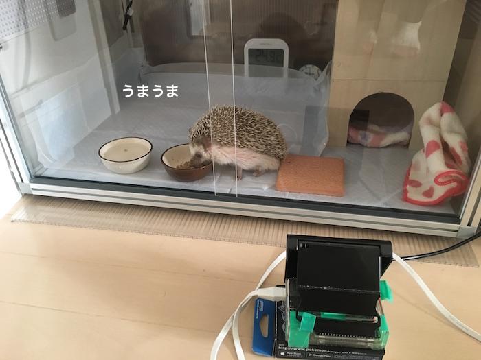 f:id:chikojirou:20170329215016j:plain