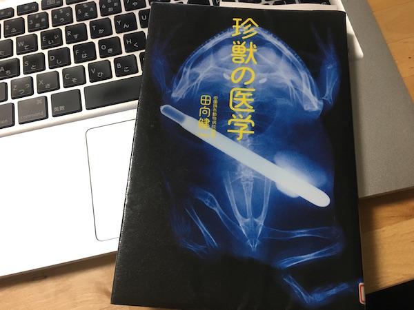 f:id:chikojirou:20170330215456j:plain