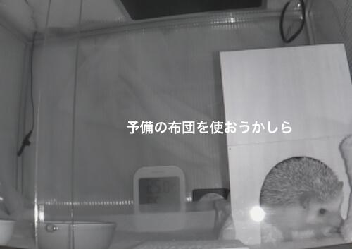 f:id:chikojirou:20170403214236j:plain