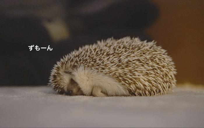 f:id:chikojirou:20170406214610p:plain