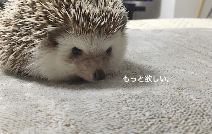f:id:chikojirou:20170409134734p:plain
