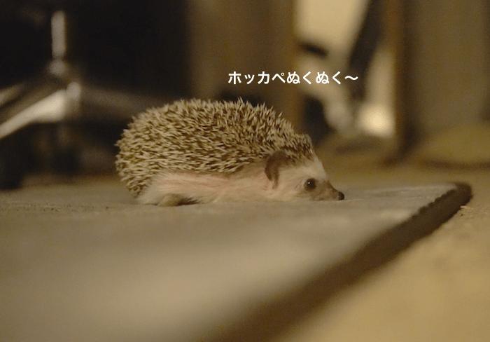 f:id:chikojirou:20170413215521p:plain