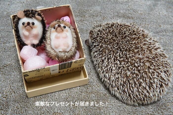 f:id:chikojirou:20170416102616j:plain