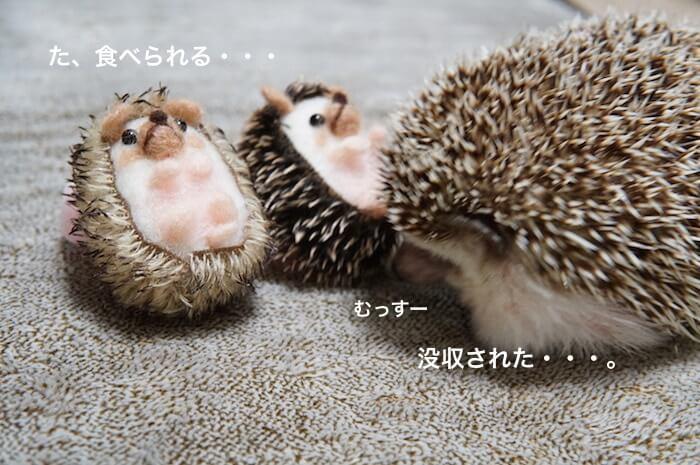 f:id:chikojirou:20170416102648j:plain
