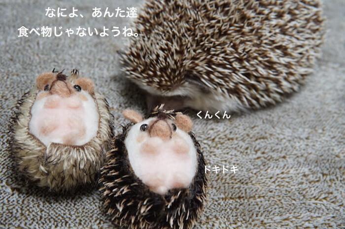 f:id:chikojirou:20170416102659j:plain