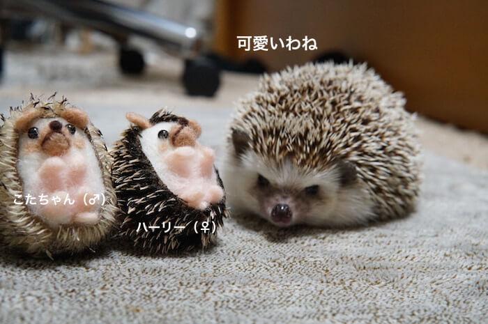 f:id:chikojirou:20170416102712j:plain
