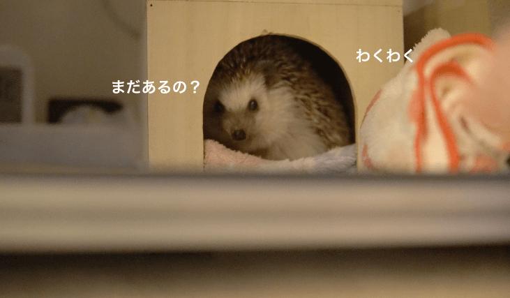 f:id:chikojirou:20170419220456p:plain