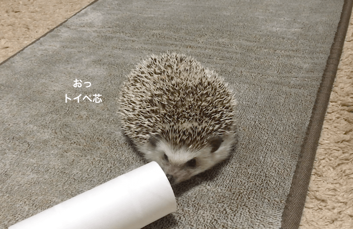 f:id:chikojirou:20170427211732p:plain
