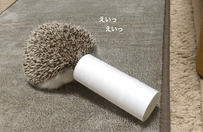f:id:chikojirou:20170427211740p:plain