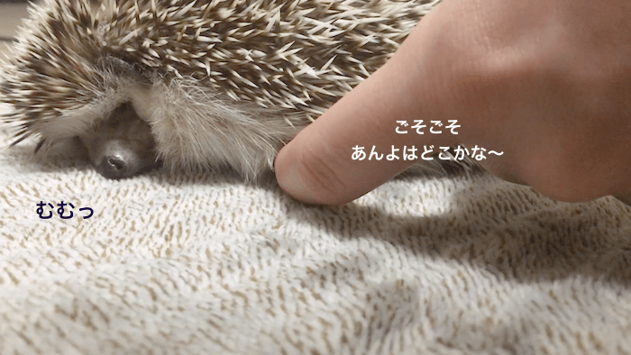 f:id:chikojirou:20170505104820p:plain