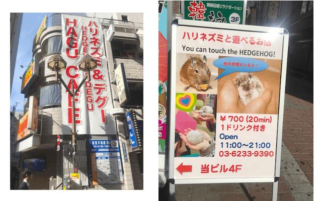f:id:chikojirou:20170506211141p:plain