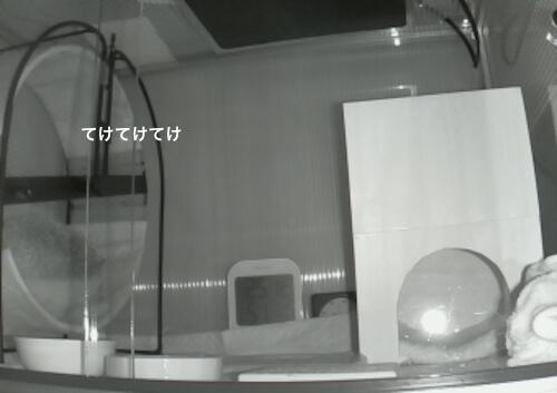 f:id:chikojirou:20170511222251j:plain