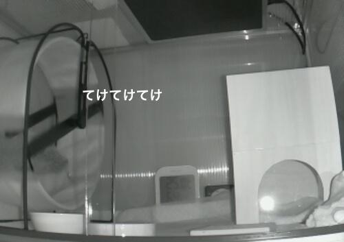 f:id:chikojirou:20170512222058j:plain