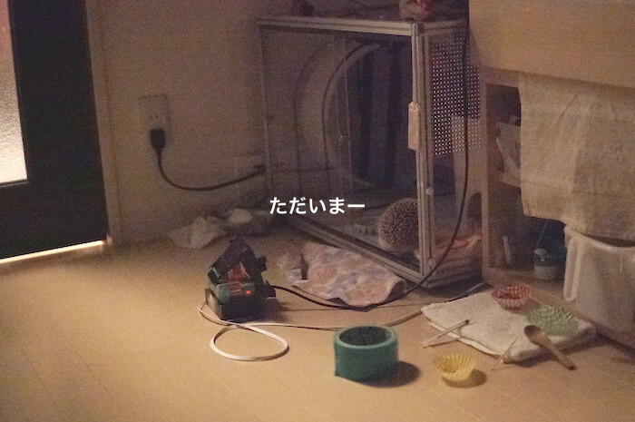 f:id:chikojirou:20170528114020j:plain