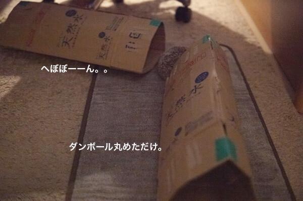 f:id:chikojirou:20170529214919j:plain