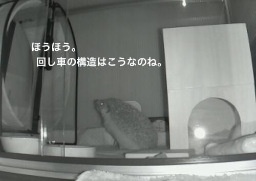 f:id:chikojirou:20170530214607j:plain