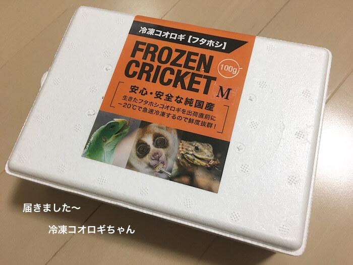f:id:chikojirou:20170602214151j:plain