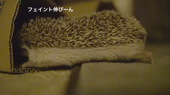 f:id:chikojirou:20170611153344p:plain