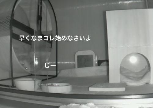 f:id:chikojirou:20170618115347j:plain