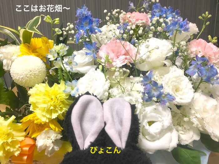 f:id:chikojirou:20170807212309j:plain