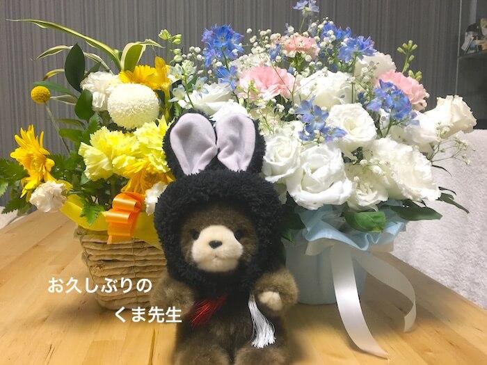 f:id:chikojirou:20170807212326j:plain