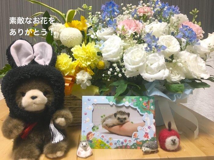 f:id:chikojirou:20170807212350j:plain